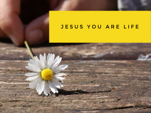 Jesus, You are Life